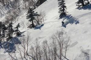標高2000m以上あるBCエリアは、12月下旬から滑れます・・・