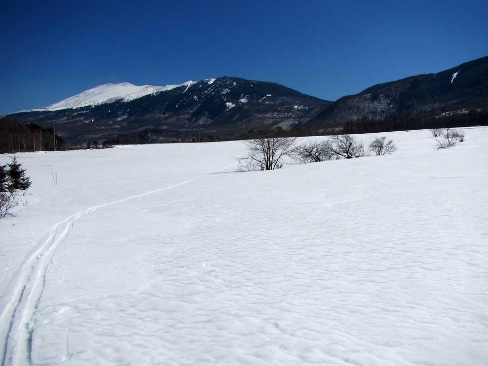 嬬恋のキャベツ畑から浅間山