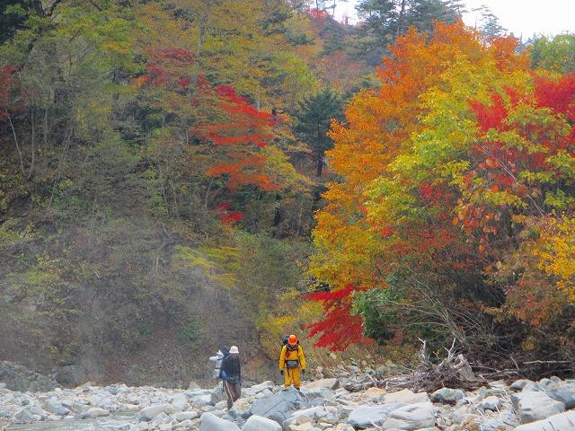 河原の白に紅葉が映える白砂川