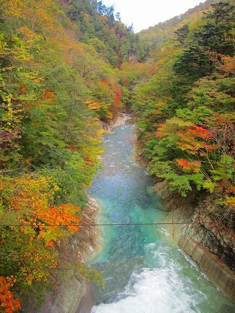 渋沢ダムから下流の景色