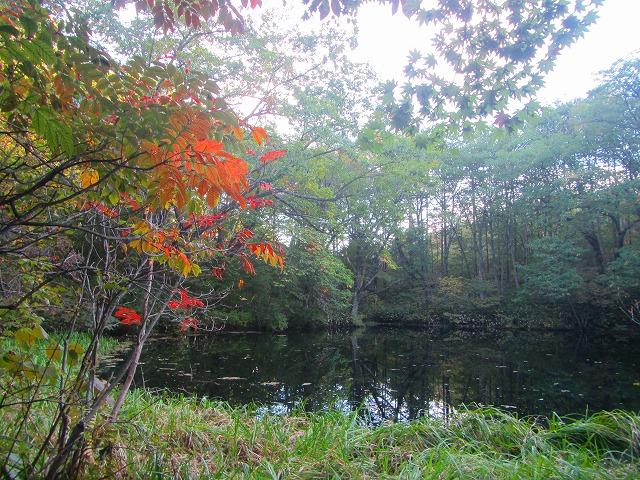 野反湖うらやまガイドIMG_5386