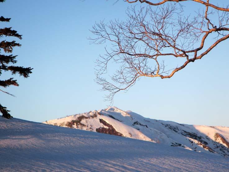 タカンボウ尾根を詰めると白砂山がいきなり眼前に現れ、思わず息を飲む。