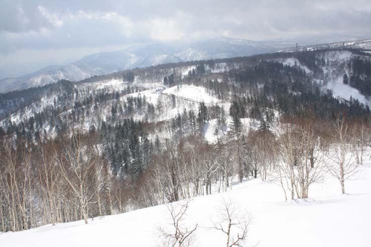 登山口の北見峠の国道を振り返る