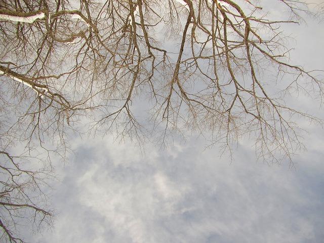 野反湖うらやまガイドIMG_5759