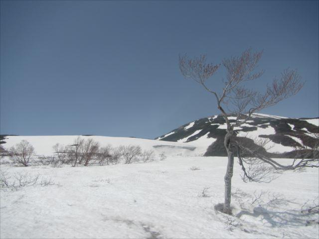 野反湖うらやまガイドIMG_5301_r