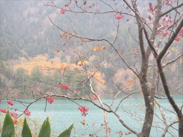 野反湖うらやまガイドIMG_1629_r