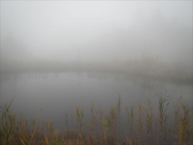 野反湖うらやまガイドIMG_1638_r