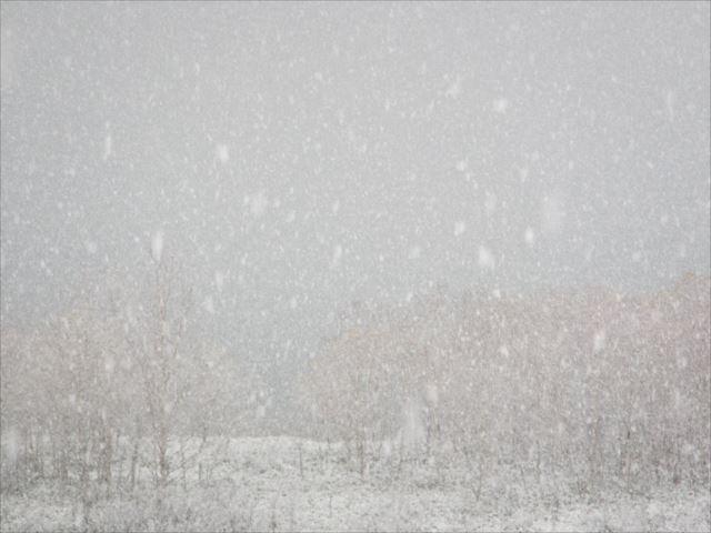 野反湖うらやまガイドIMG_7036_r