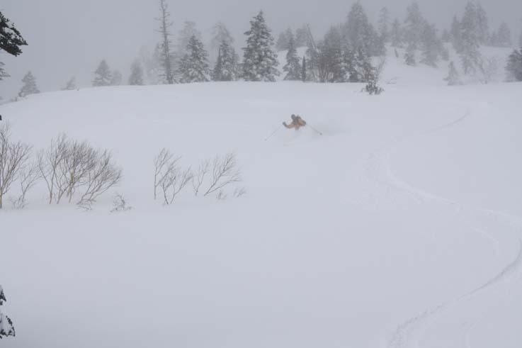 翌日は一転地吹雪の下山