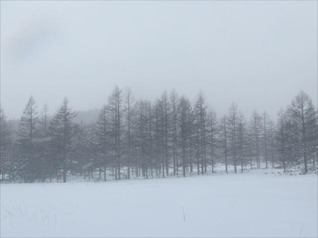 野反湖うらやまガイド190103_r