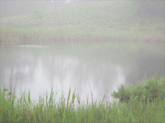 野反湖うらやまガイドIMG_2234_r
