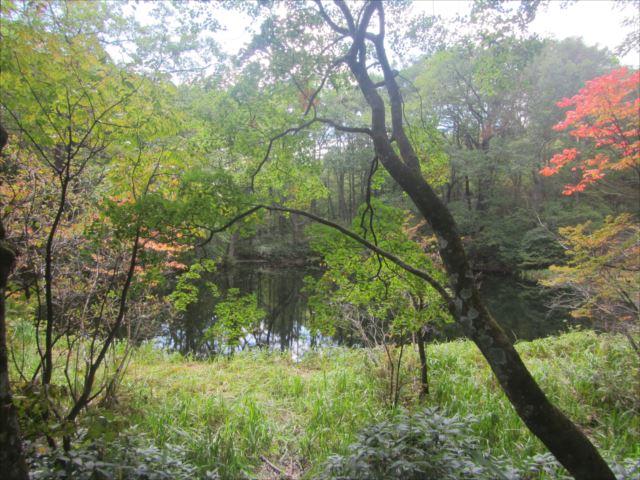 野反湖うらやまガイドIMG_7802_r
