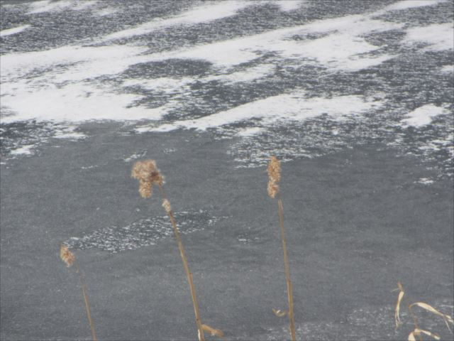 野反湖うらやまガイドIMG_0065_r